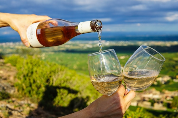 Provence Winery Experience