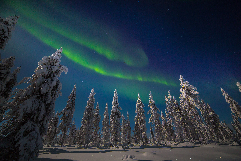 Aurora The Northern Lights