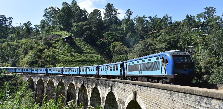 sri lanka train in jungle